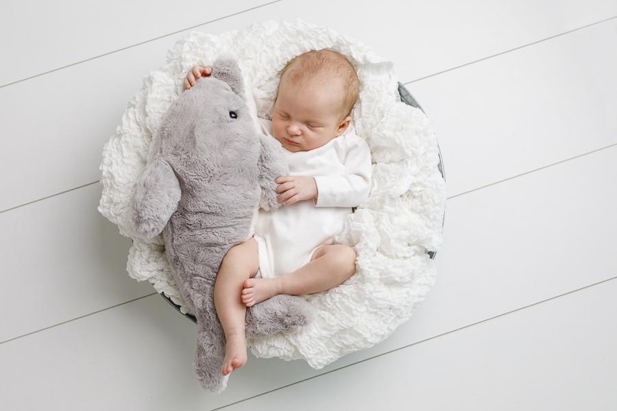 nyfödd nyföddfotografering fotograf sundsvall felicia matfors barnfotograf