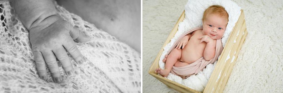 fröjdis nyfödd nyföddfotografering nyföddfotograf sundsvall matfors fotograf